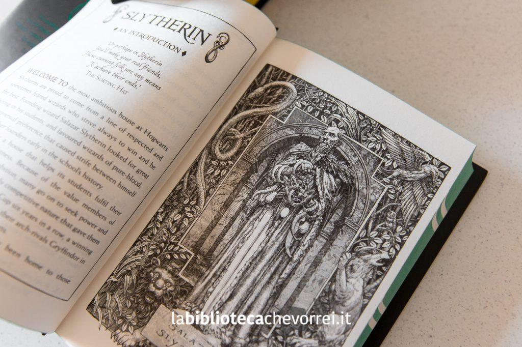 """Illustrazione di Levi Pinfold per """"Harry Potter and the Philosopher's Stone"""" edizione Slytherin."""