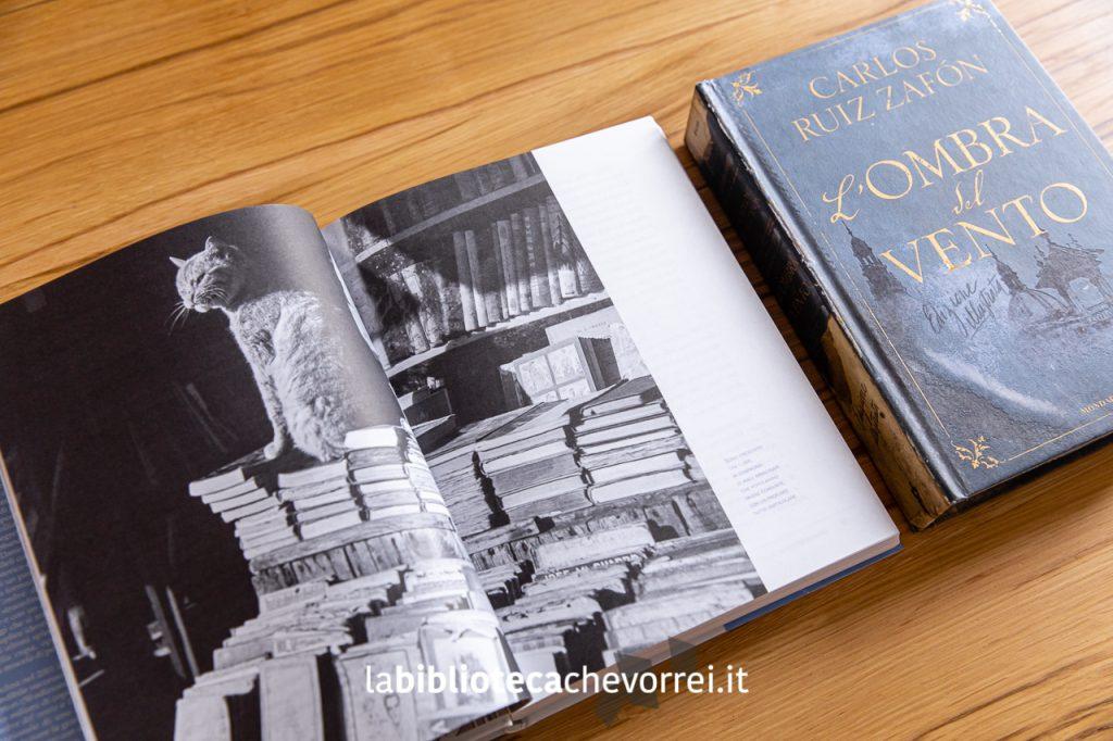 """Pagina interna dell'edizione illustrata de """"L'ombra del vento"""" di Carlos Ruiz Zafón."""