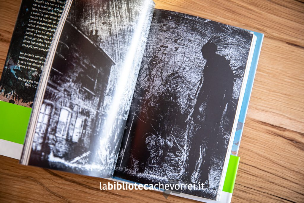 Bellissime illustrazioni in bianco e nero di Jim Kay. A Jim Kay verranno affidate anni dopo la realizzazione di tutti i libri illustrati della serie di Harry Potter.